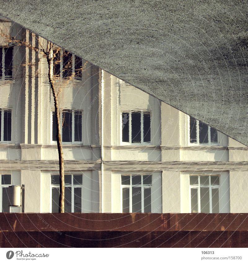Fotonummer 113366 Farbe Wasser Baum Einsamkeit Haus Winter Fenster Architektur Autofenster Gebäude grau Fassade graphisch Verkehrswege Surrealismus Geometrie
