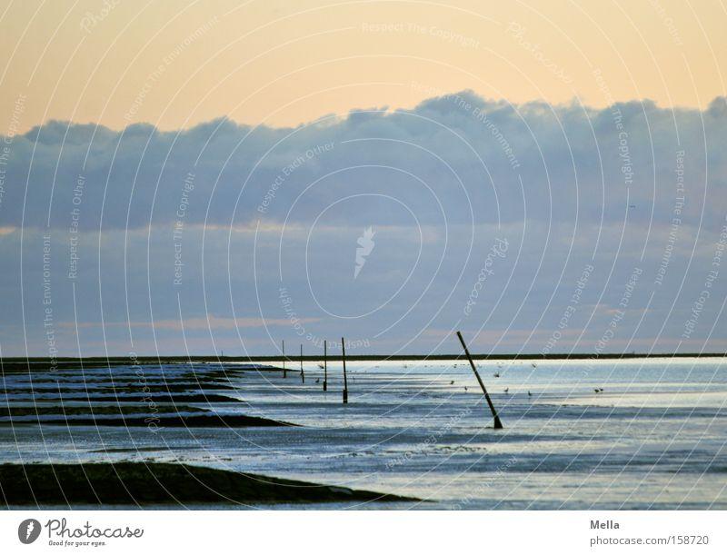 Wintersee Wasser Himmel Meer Strand Ferien & Urlaub & Reisen ruhig Wolken Einsamkeit Küste leer Nordsee Ebbe Buhne
