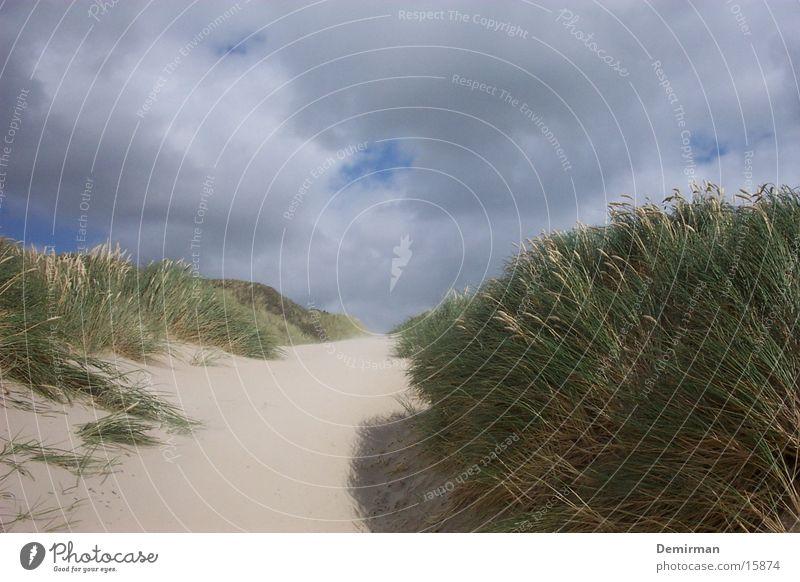 dünen_2 Wasser Himmel grün blau Sand hell Stranddüne