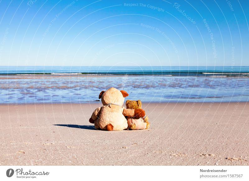 Seele baumeln lassen Ferien & Urlaub & Reisen Sommer Meer Ferne Strand Freundschaft Fröhlichkeit warten genießen Schönes Wetter Freundlichkeit Urelemente Schutz