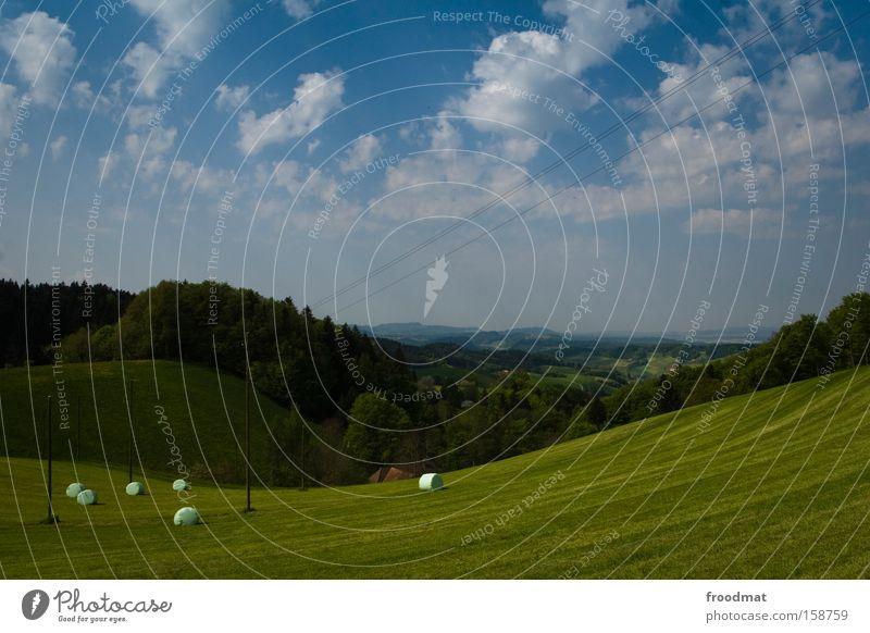 bügelfalten Wiese Gras Berge u. Gebirge Schweiz Hügel saftig Himmel Wald Rasenmäher Aussicht Landschaft Idylle Wolken Alpen Sommer lenk