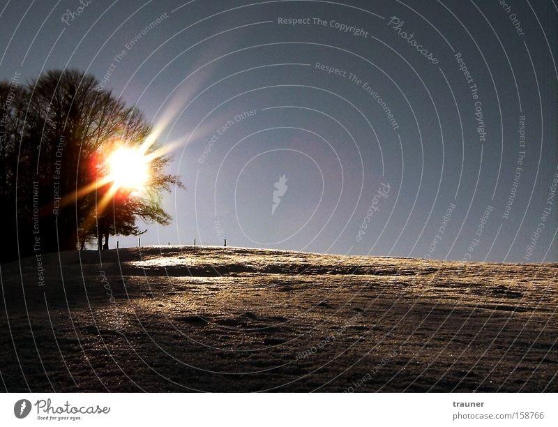 In contrast Sonne Winter Schnee Sonnenuntergang Baum Kontrast Verschiedenheit Schatten brennen Reflexion & Spiegelung Allgäu ruhig Erholung kalt Himmel blau