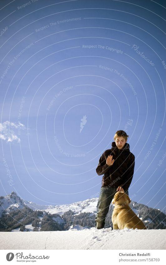 Spaziergang Himmel Mann Jugendliche Hund Winter Tier Schnee Berge u. Gebirge Alpen Schneelandschaft Kindererziehung Wintersport Labrador