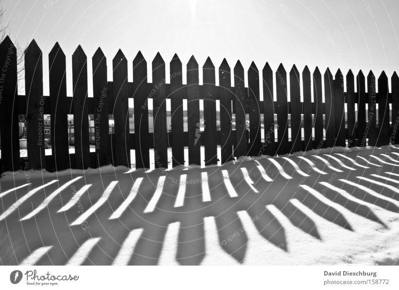 Last winterdays weiß Sonne Winter schwarz kalt Schnee Holz Eis Frost Spitze Zaun Grenze parallel Geometrie Symmetrie Schattenspiel