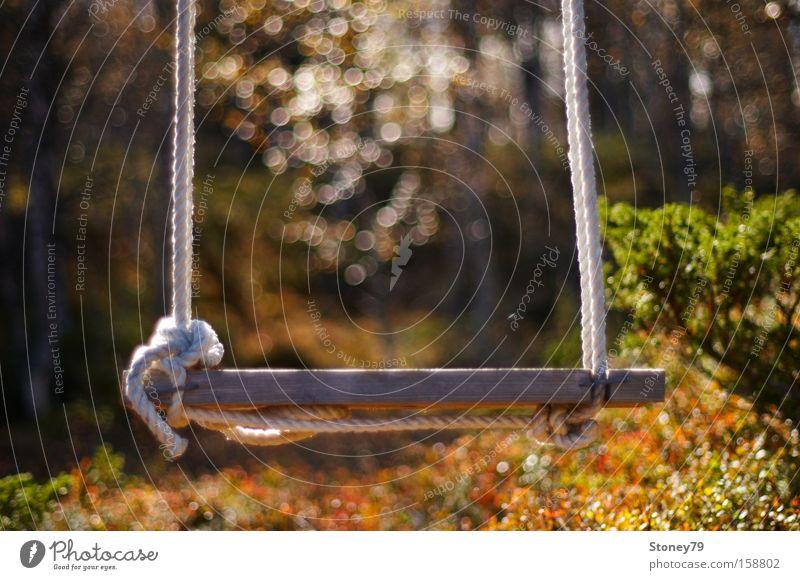 Schaukel Natur Freude Einsamkeit Wald Herbst Garten Wärme träumen Seil Sträucher Frieden Sehnsucht Freundlichkeit Spielzeug Schönes Wetter Holzbrett