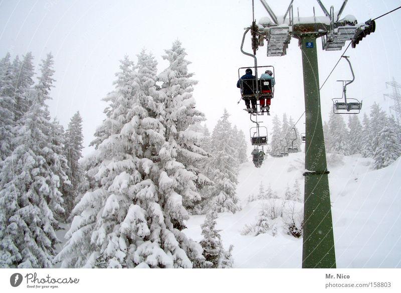 hinterher Natur weiß Winter kalt Schnee Jahreszeiten Wald Schweben Wintersport Sesselbahn Winterurlaub Skigebiet Winterwald Verfolgung