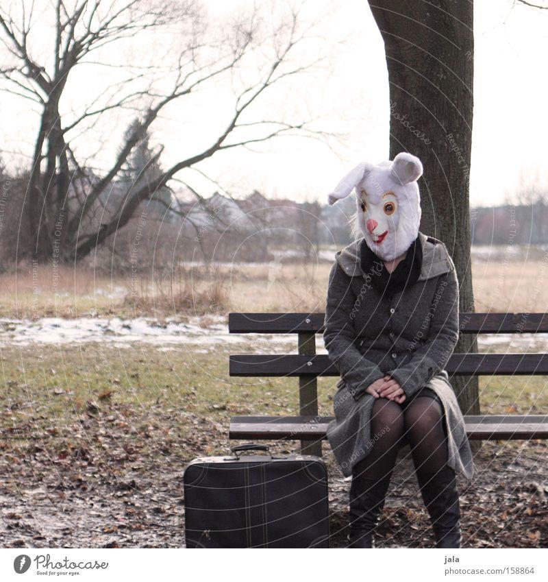 frühling wo bist du Hase & Kaninchen Osterhase Ostern Karneval verkleiden Tier weiß lustig Frau Karnevalskostüm Kostüm Zu früh Freude Winter Koffer Garten Park