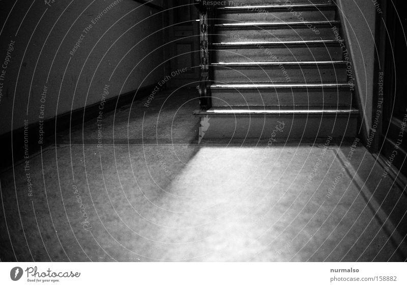 Aufabwärts Treppe Flur Treppenhaus Stadthaus Steinboden Einsamkeit kalt gehen Flucht analog Keller Architektur Häusliches Leben Schwarzweißfoto Kellertreppe