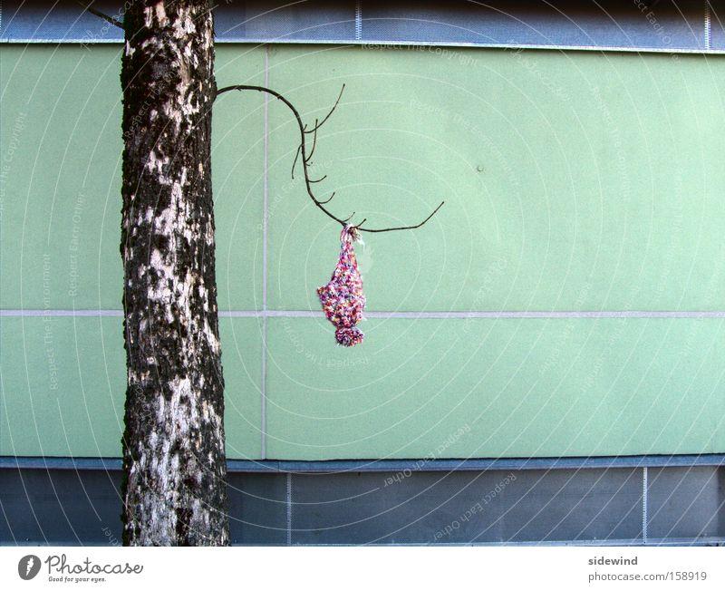 lost & found Natur schön Baum Winter Einsamkeit Umwelt Landschaft Herbst kalt Spielen Traurigkeit Kunst Klima Ausflug Dekoration & Verzierung Bekleidung
