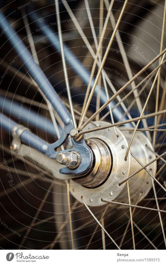 Radspeichen Fahrrad Metall blau silber Speichen durcheinander Schraube Außenaufnahme Nahaufnahme Menschenleer Farbfoto Tag Detailaufnahme Gedeckte Farben