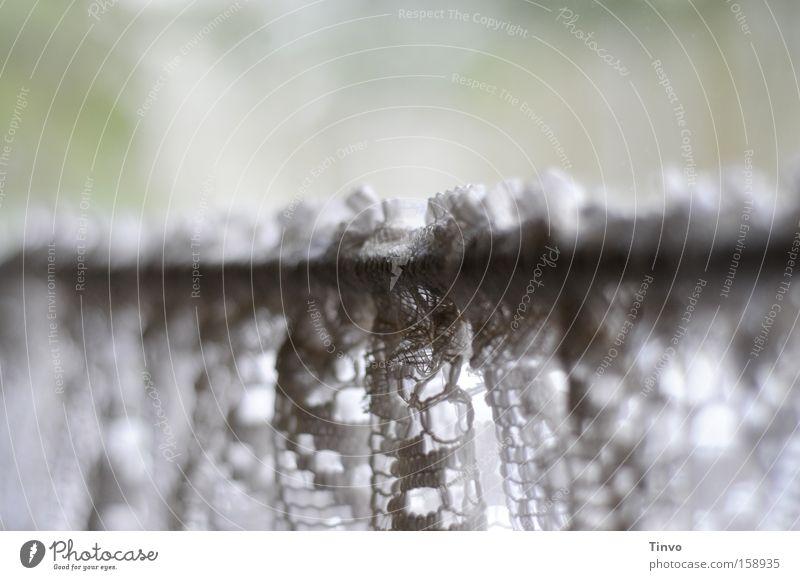 Spitzenmodell gemütlich Gardine ländlich altmodisch heimelig Sichtschutz