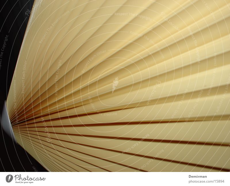 lampenfächer Lampe Linie hell Häusliches Leben Streifen beige Fluchtpunkt