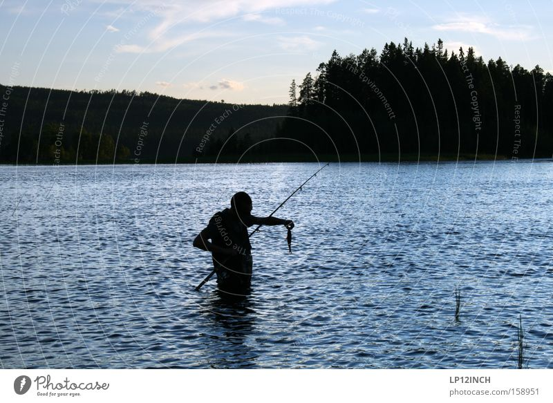Große Fische, kleine fische Skandinavien Schweden Angeln Barsch Angelrute Blick fangen Wasser Fliegenfischen Raubfisch Abend Angelköder stehen Fluss Bach Erfolg