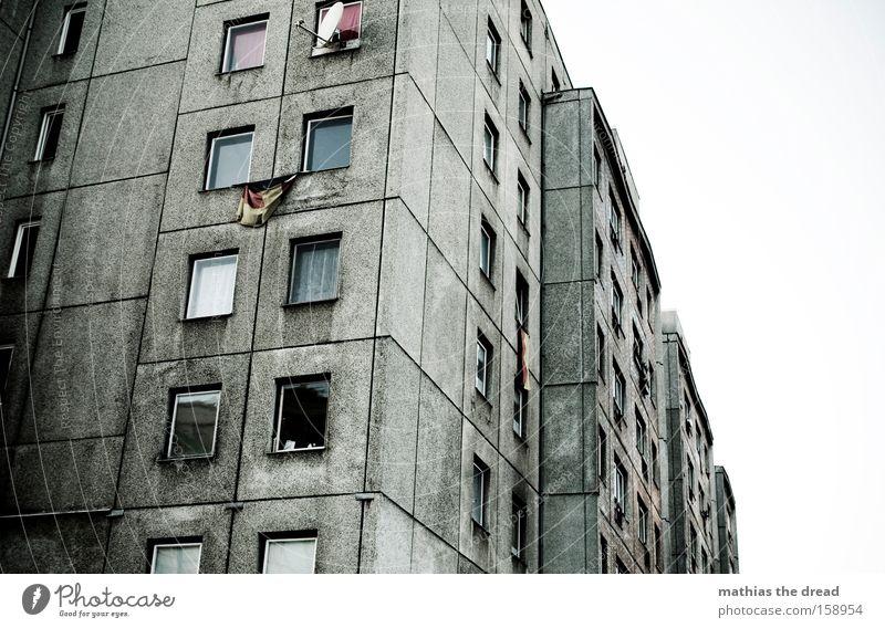 DEUTSCHE LEITKULTUR Architektur Gebäude Plattenbau Fenster Linie verrückt dunkel grau abweisend Deutschland Deutsche Flagge Bundesadler Stolz Patriotismus