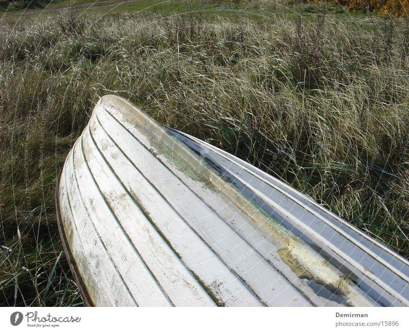 gestrandet Wasserfahrzeug weiß Wiese Strand Einsamkeit obskur Anschnitt Insel
