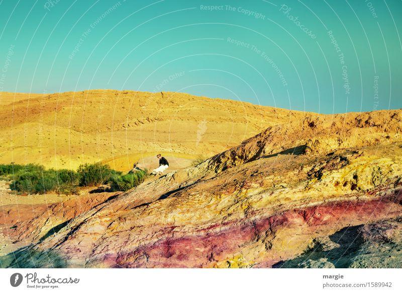 Die Wüste lebt Mensch Frau Ferien & Urlaub & Reisen Jugendliche Sommer Junge Frau Ferne Berge u. Gebirge Erwachsene gelb feminin Gras Stein Tourismus wandern