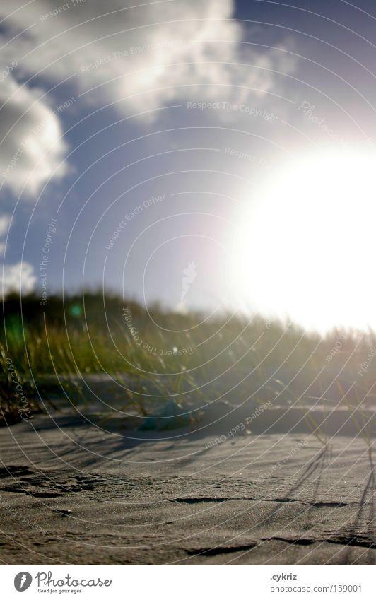 Die Sonne ist hinter der Düne. Der Himmel auch. Himmel Sonne Strand Wolken Gras Freiheit Sand Stimmung Küste Tourismus Freizeit & Hobby Idylle Stranddüne Brasilien