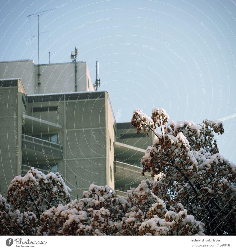 fuck winter Baum Winter Haus kalt Schnee Quadrat Antenne Plattenbau Wohnhochhaus