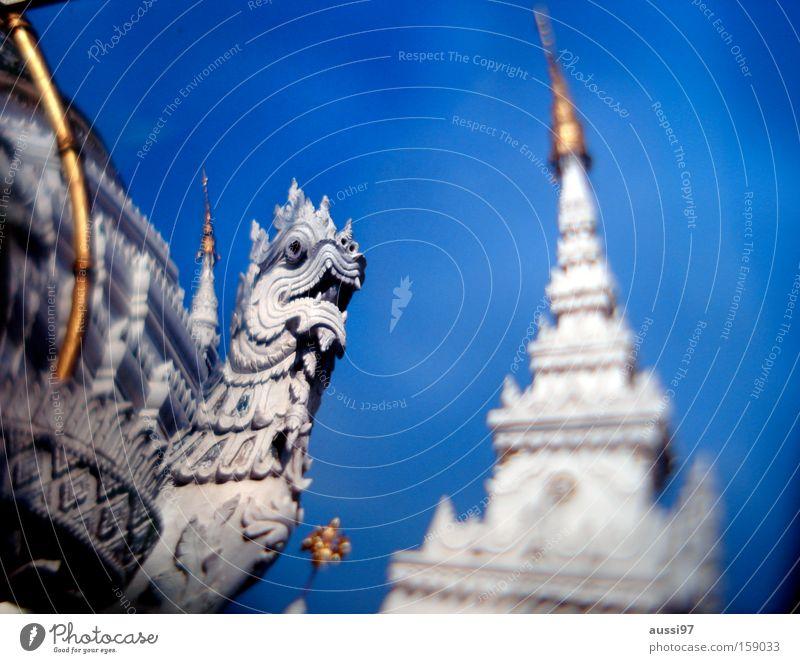 Thai Wiskey machte mich betrunken. Asien Drache untergehen Thailand Tempel verwaschen verraucht