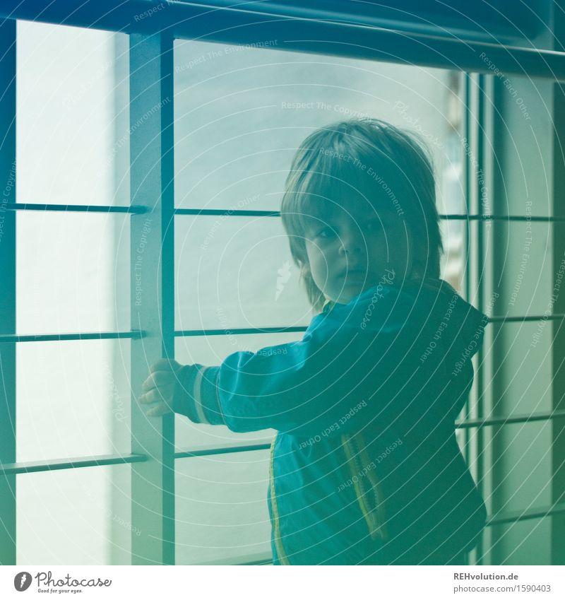 """""""Es ist gefährlich da draußen!"""" Mensch Kind blau grün Einsamkeit Fenster Junge klein maskulin Kindheit stehen warten Abenteuer Neugier Schutz Sicherheit"""