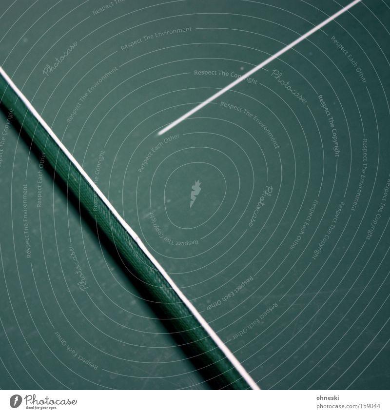 Y oder so grün Sport Spielen oben Linie Netz Freizeit & Hobby Buchstaben Halle graphisch minimalistisch Ballsport Tischtennis Tischtennisplatte