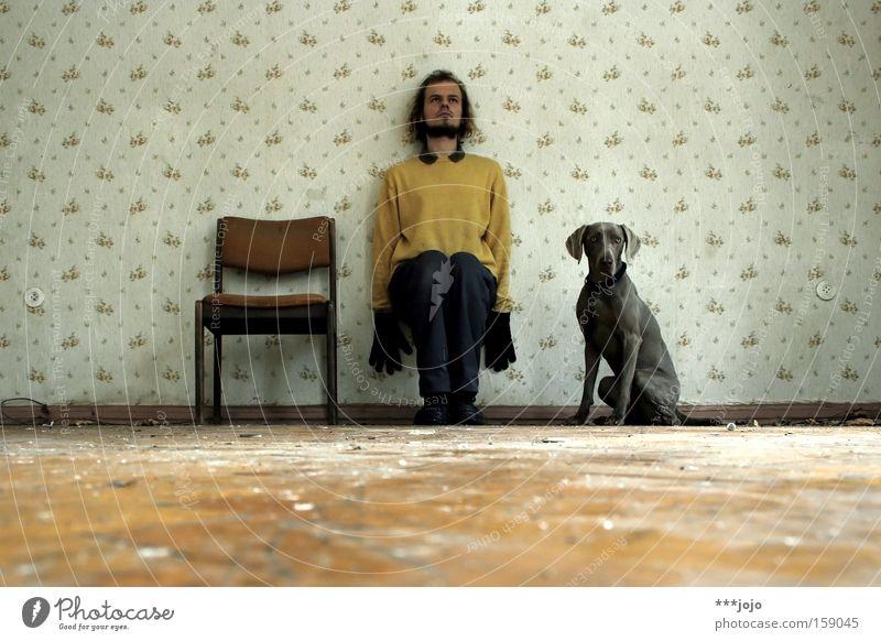 der stuhl / der herr / der hund. [weimar 09] 3 Hund Mann Tapete Stuhl trashig sitzen Wand seltsam Körperhaltung Wachsamkeit Nervosität verfallen Verfall