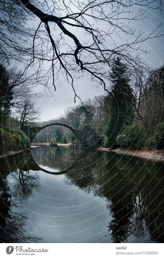 Loch in der Landschaft Umwelt Natur Pflanze Himmel Wolken Horizont Wetter Baum Sträucher Seeufer Bauwerk Bogenbrücke rund Idylle Zweige u. Äste Deutschland