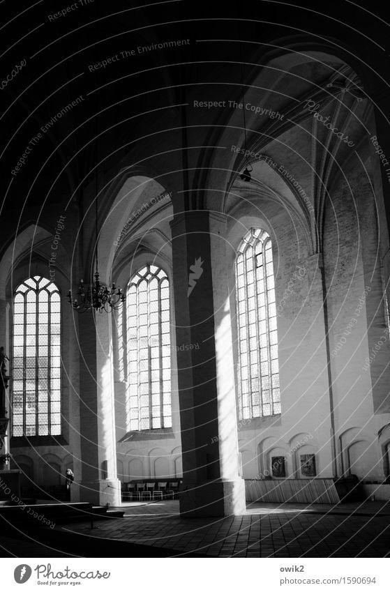 Lausitzer Gotik Frau Erwachsene Kirche Dom Bauwerk Fenster Säule Bogen Kirchenfenster Altarraum Chorraum leuchten hoch Glaube Religion & Glaube Hoffnung heilig