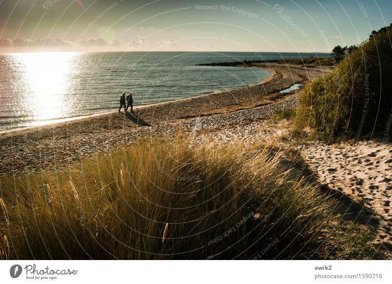 Seestück Mensch Frau Erwachsene Mann 2 Umwelt Natur Landschaft Pflanze Sand Luft Wasser Himmel Wolken Horizont Herbst Schönes Wetter Gras Sträucher Küste Ostsee