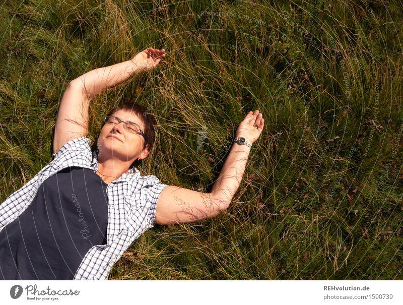helgi macht pause feminin Weiblicher Senior Frau Großmutter 1 Mensch 45-60 Jahre Erwachsene 60 und älter Umwelt Natur Pflanze Schönes Wetter Wiese genießen