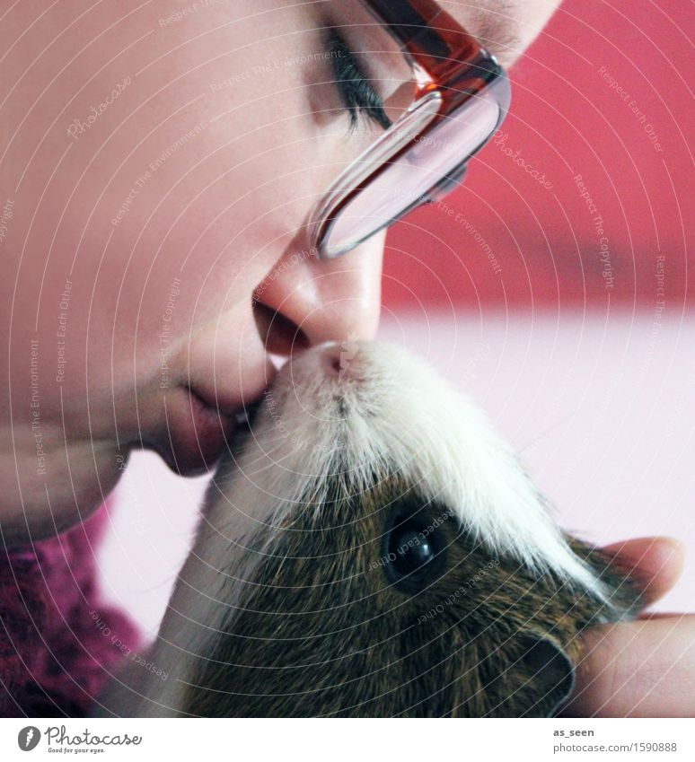 Küsschen Mensch Jugendliche Junge Frau rot Tier Mädchen Gesicht Wärme Liebe Gefühle feminin braun 13-18 Jahre Lebensfreude weich Freundlichkeit
