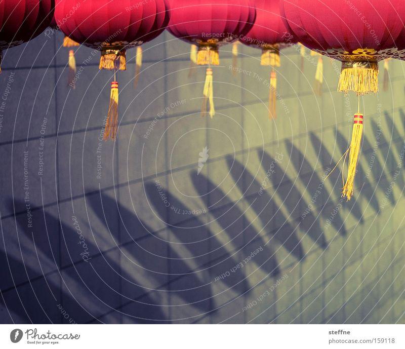 lampions Glück Karneval Kultur Tradition Laterne China Lampion Detailaufnahme Licht Schatten