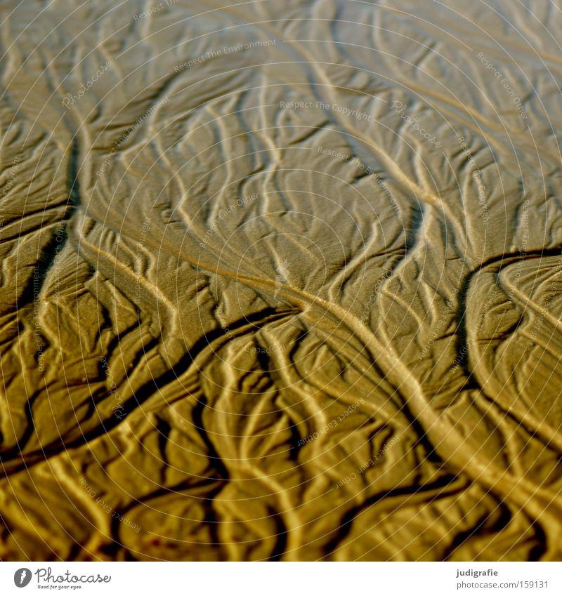 Strandformen Sand Strukturen & Formen Wasserrinne Fluss fließen Natur spülen Meer Nordsee Sylt Küste Berge u. Gebirge Tal Farbe ausgespült