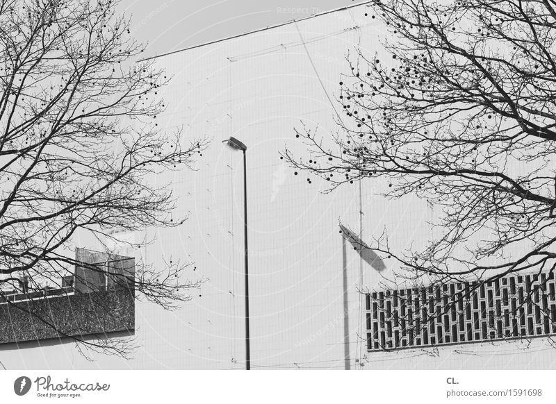 laterne Herbst Winter Schönes Wetter Baum Mauer Wand trist Stadt Laterne Straßenbeleuchtung Laternenpfahl Schwarzweißfoto Außenaufnahme Menschenleer Tag Licht