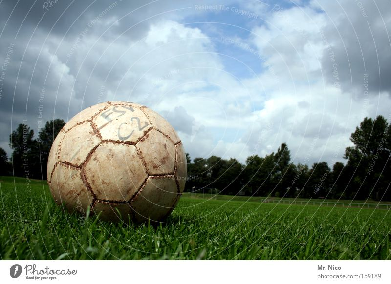tritt mich ! Himmel Wolken Freude Umwelt Wiese Gras Sport Freizeit & Hobby Fußball rund Ball Spielfeld Sportrasen Fußballplatz treten Ballsport