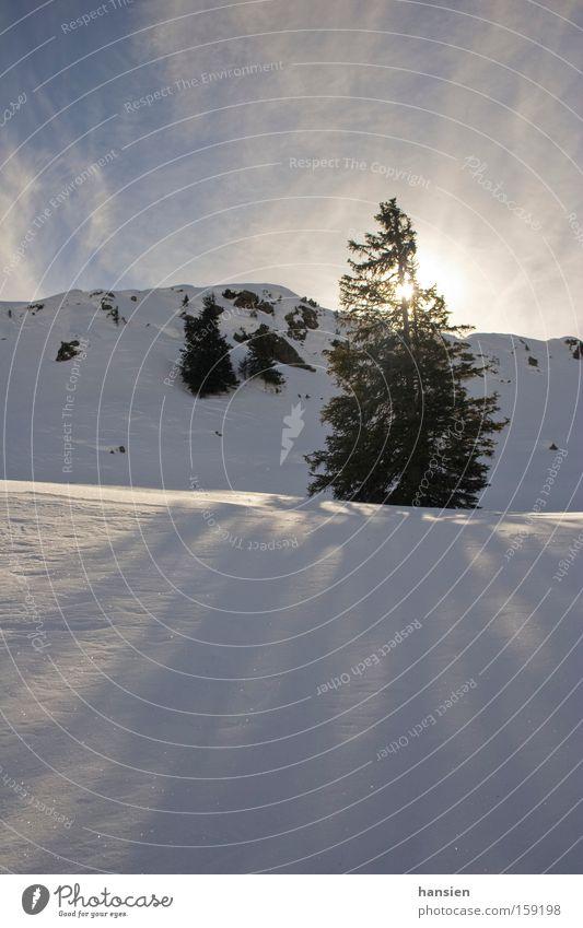 Schatten im Schnee Baum Sonne Winter Wolken Berge u. Gebirge Lichtspiel