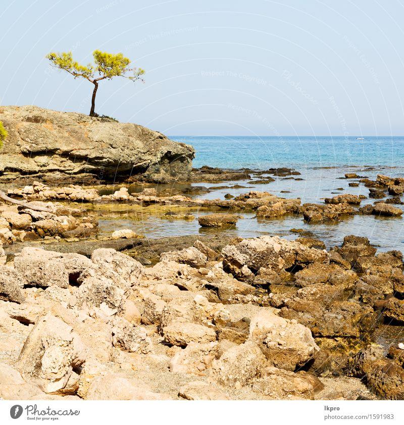 Europa Kiefer Pflanze und Baum Himmel Natur Ferien & Urlaub & Reisen blau grün Sommer Sonne Meer Landschaft Wolken Strand Berge u. Gebirge Architektur Küste