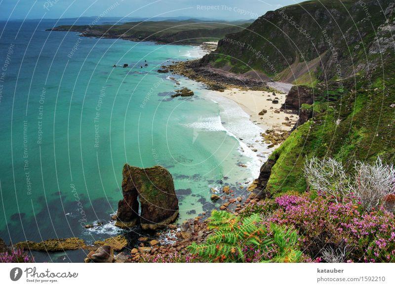traumhafte bucht Natur Landschaft Pflanze Wasser Felsen Wellen Küste Meer außergewöhnlich exotisch frei Unendlichkeit maritim mehrfarbig türkis Zufriedenheit