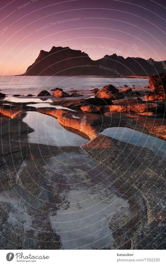 sonnenuntergang auf den lofoten Landschaft Wolkenloser Himmel Sonnenaufgang Sonnenuntergang Schönes Wetter Felsen Küste Strand ästhetisch außergewöhnlich
