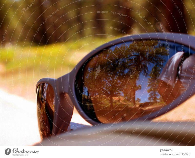 sun glasses Sonnenbrille Stil Sommer Physik Reflexion & Spiegelung Brille Fototechnik Wärme glaesser