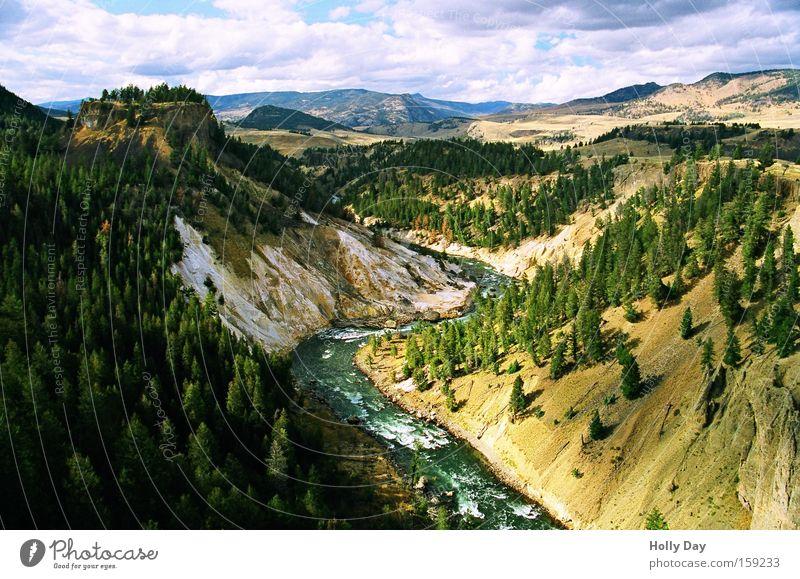 Yellowstone River Fluss Baum grün Berghang Wasser Wolken Wald Nationalpark Felsen Stromschnellen Landschaft Schatten Bach USA Küste