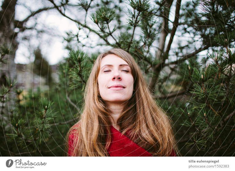 Genießerin Frau Natur Jugendliche Pflanze schön Junge Frau Baum Erholung ruhig 18-30 Jahre Erwachsene Leben Herbst natürlich Religion & Glaube feminin