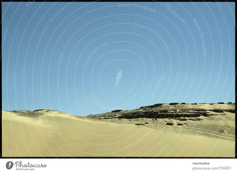 Morgen in der Wüste Natur Wärme Sand Erde Afrika Sturm Vergangenheit Dürre Ägypten Kamel Pyramiden Kairo Pharaonen Geier Nil