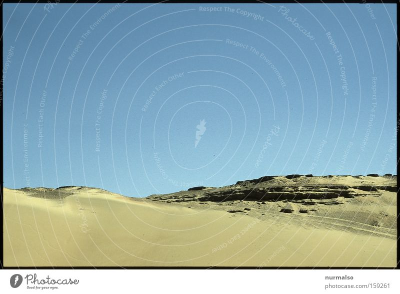 Morgen in der Wüste Natur Wärme Sand Erde Afrika Wüste Sturm Vergangenheit Dürre Ägypten Kamel Pyramiden Kairo Pharaonen Geier Nil