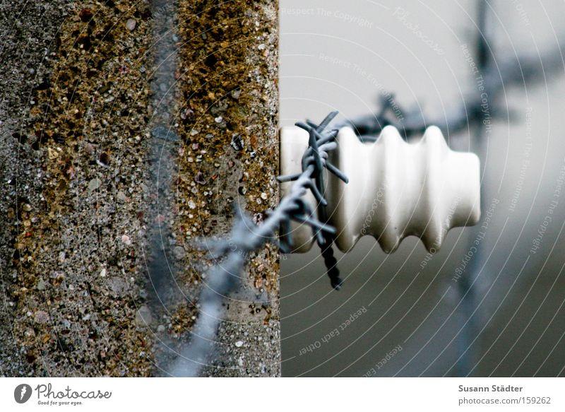 Gedenkstätte Stacheldraht Rost Metall Metallwaren Stein Zaun Schutz Sicherheit Mord Buchenwald erinnern Denkmal Detailaufnahme Wand Verfolgung Vergangenheit