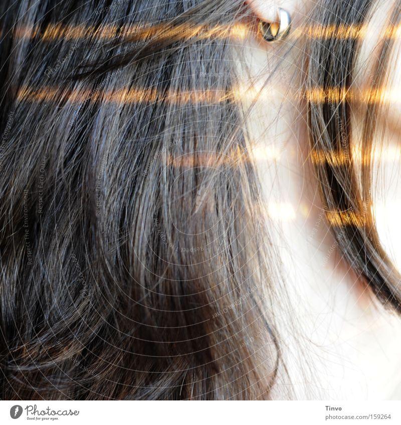 until the morning comes Frau Haare & Frisuren träumen Wärme gold genießen brünett Silber Hals Morgen gestreift Ohrringe Lichtstreifen Haarspitze