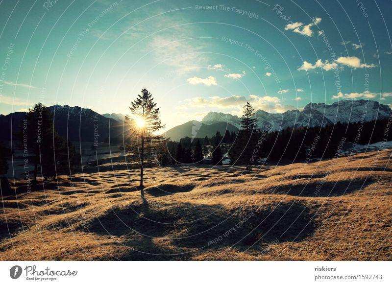 guten morgen Umwelt Natur Landschaft Wolken Sonnenaufgang Sonnenuntergang Frühling Schönes Wetter Schnee Wiese Wald Hügel Alpen Berge u. Gebirge leuchten frei