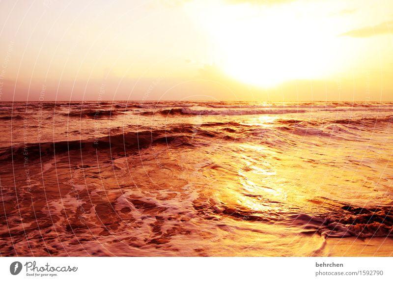 goldrausch Himmel Natur Ferien & Urlaub & Reisen schön Sommer Wasser Meer Landschaft Wolken Ferne Strand Wärme Frühling Küste Freiheit Tourismus