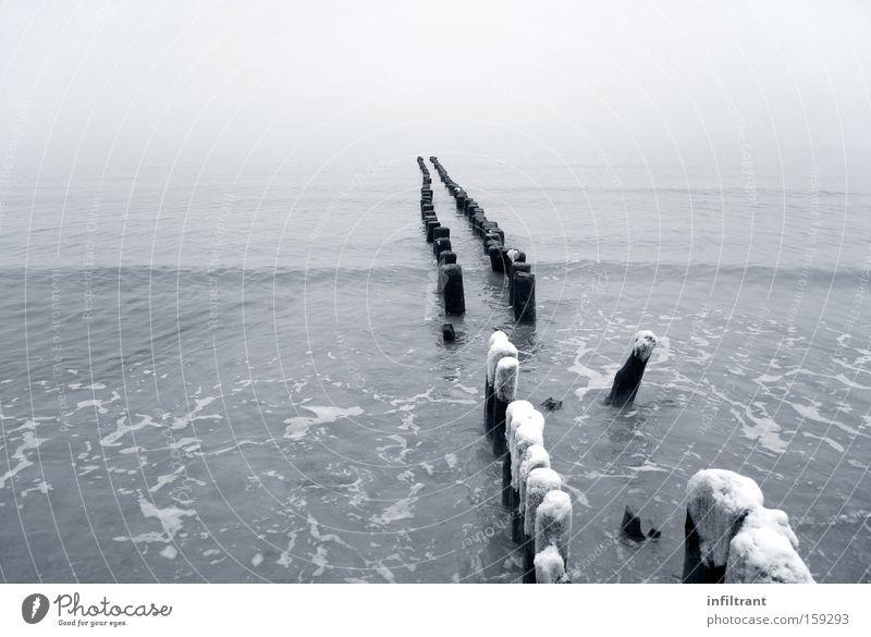 Winter am Meer Wasser Strand kalt Schnee grau Küste Wellen Ostsee Buhne