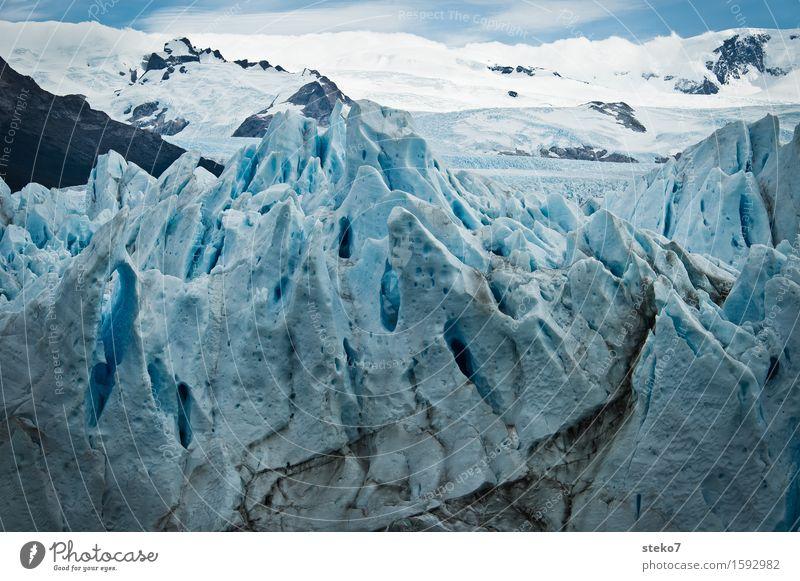 Eiszeit blau weiß Berge u. Gebirge kalt Vergänglichkeit Wandel & Veränderung Schneebedeckte Gipfel eckig bizarr frieren Gletscher steil Perito Moreno Gletscher